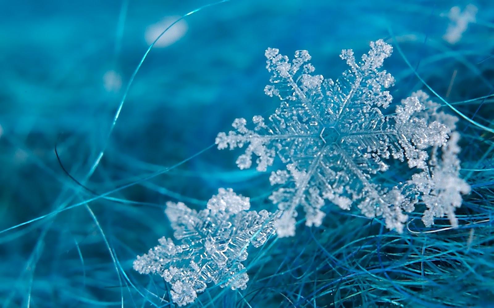 Geometría de los copos de nieve